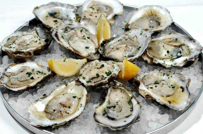 Oyster picture for blog